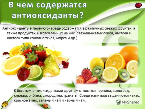 antioksidanty obzor